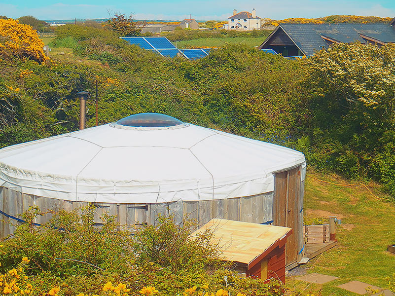 Traditional White glamping yurt with the front doors open in the sunshine and green bracken at its side